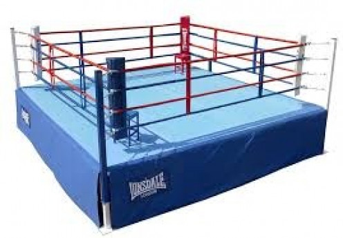 The Boxing ring is where all the action takes place. Remember the number one rule in boxing is to protect yourself at all times.