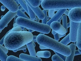 The evolution of bacteria is outpacing our ability to research new antibiotics
