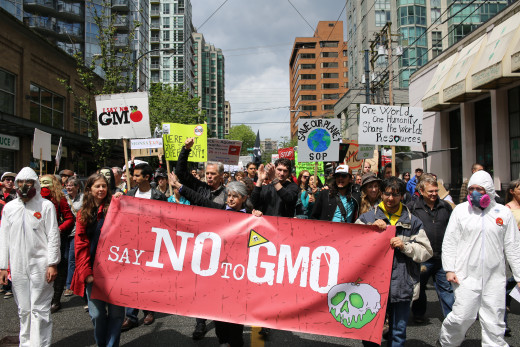 "I love the Snow White poison apple on the ""Say NO To GMO"" banner. That was clever."