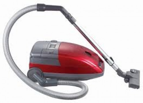 Vacuuming helps to get rid of small bugs such as fleas and it also gets your home clean which is a good thing as well.