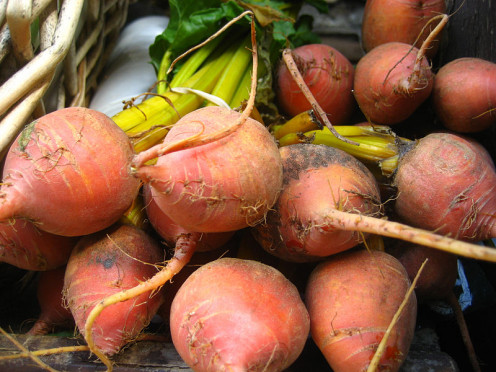 Picture of pulled Beets. That you can grow and use for your family with your meals.