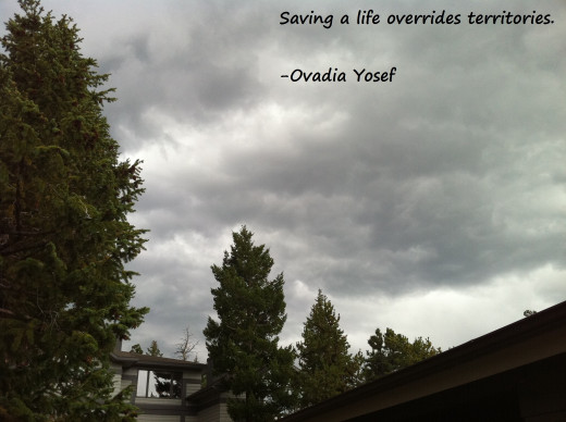 Short, but true quote, about saving a life.