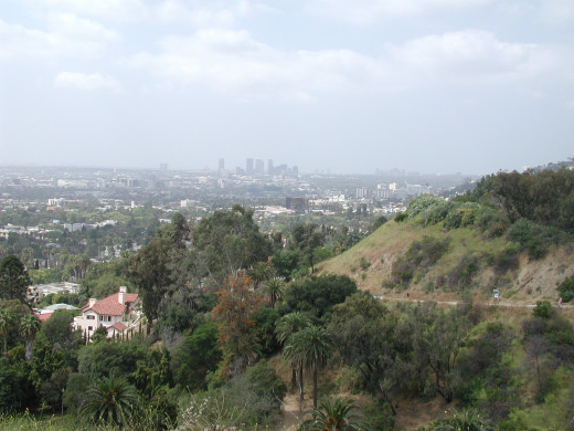 The View from the top of Runyon Canyon