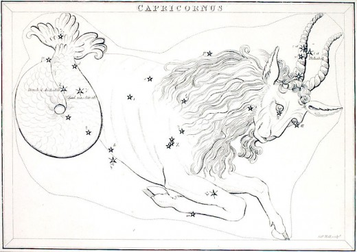 Capricornus.Capricorn Constellation