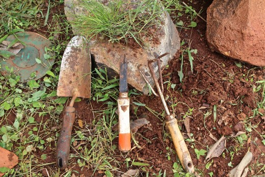 This trowel, hand weeder, and hand rake are my weeding arsenal.