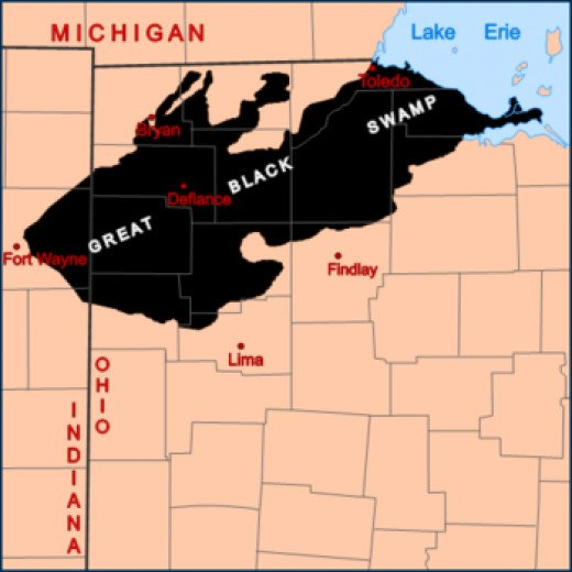 The Great Black Swamp land in Northwest Ohio and eastern Indiana around 1800.