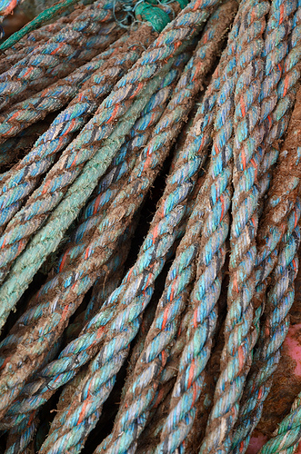 Ropes from Carol flickr.com