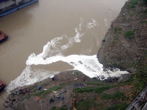 "According to the World Wildlife Fund (WWF), ""The annual discharge of sewage and industrial waste in the river has reached about 25 billion tons, which is 42% of the country's total sewage discharge, and 45% of its total industrial discharge"" (n.d.)."