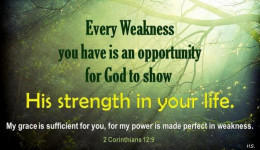 Let Him Show You His Strength