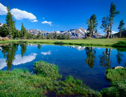 Crystal clear waters amid sprawling meadows: Tuolumne.