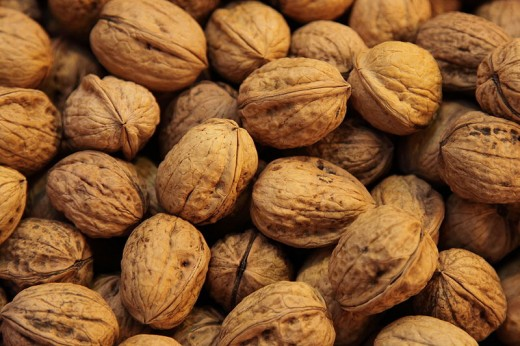 Walnuts, intact with shells. Walnuts are the ultimate brain food, and they have a wholesome nutritional profile too!
