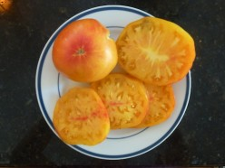 Got a favorite heirloom tomato?
