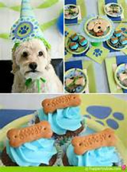 Host a Fun Dog Party!