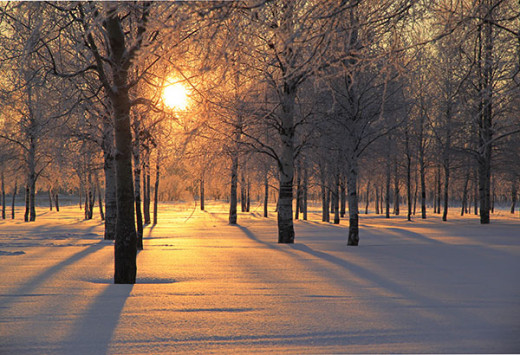 Snow can look beautiful in the forest but can be hazardous on the sidewalks, roads and pavements.