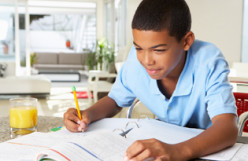 Single Parent Homeschooling: The Robinson Self-Teaching Curriculum