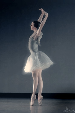 Photographing Gracefulness