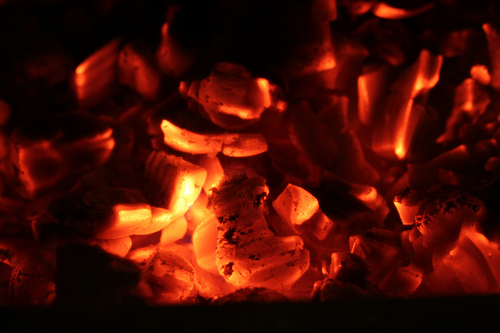 Day 76: dying embers from Shep flickr.com