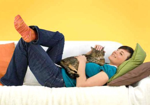 Snuggle up on the sofa with your partner or a four-legged friend