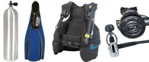 These are basic but essential must for simple scuba diving.