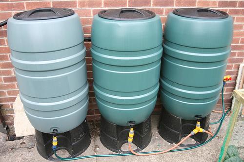water barrels / butts