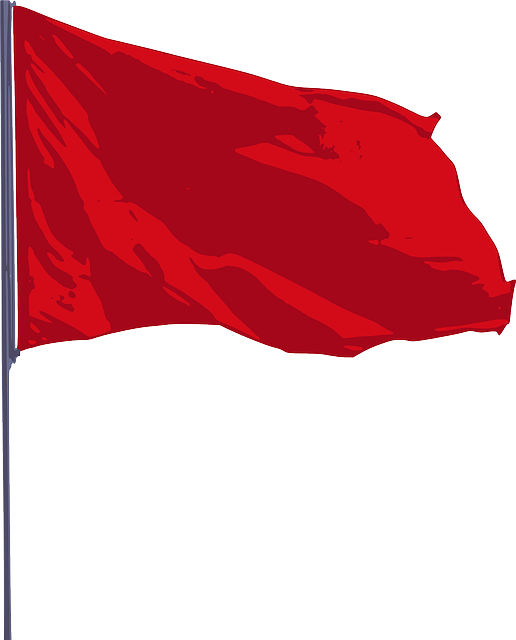 The red flag is a common symbol used to represent socialism around the world.  It was first used as a symbol representing left-wing politics during the French Revolution (1789–99).
