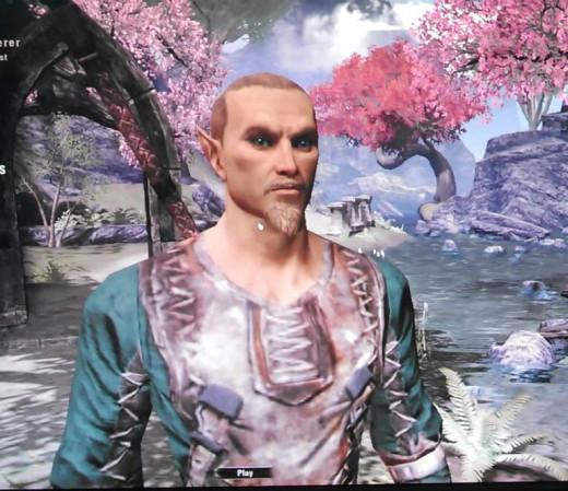 Character design screen of a High Elf Sorcerer