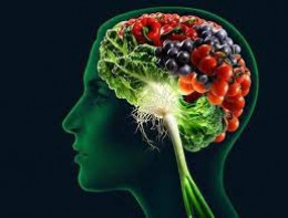 The brain needs the right nutrients to stay healthy.