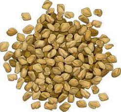 11 Health Benefits of Fenugreek