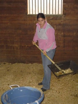 Eliminating Barn Odor