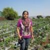 manasi1828 profile image