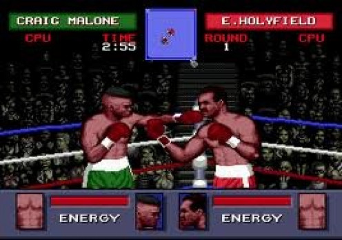 Evander Holyfield's Real Deal boxing featured build your own fighter career mode and lots of improved graphics of the time.