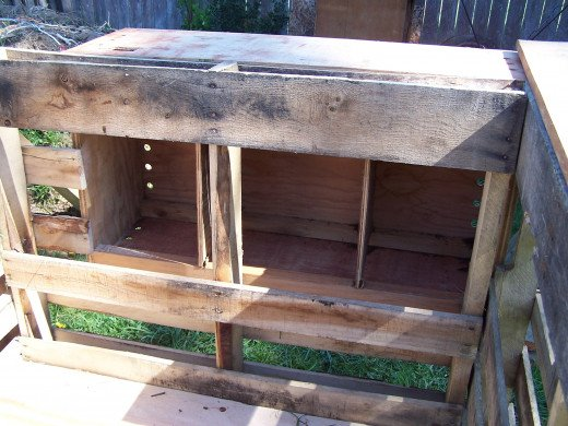 Nesting boxes in unfinished coop