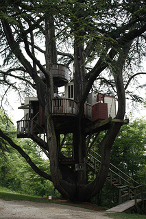 If your kid has a tree house, you could take your decorating idea and design a space to suit the location.