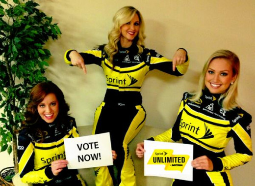 The Sprint Unlimited race allowed fans to vote on some of the race's features including how many laps would be in each segment