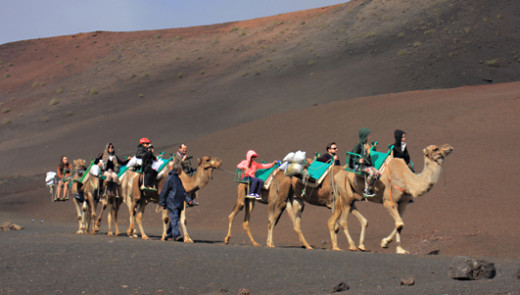 Camel rides - no doubt an experience to remember particularly for children visiting the park