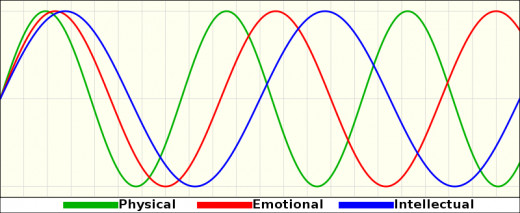 One's alertness and performance rises and falls in cycles, known as biorhythm. It is helpful to be aware of these and keep a regular schedule.