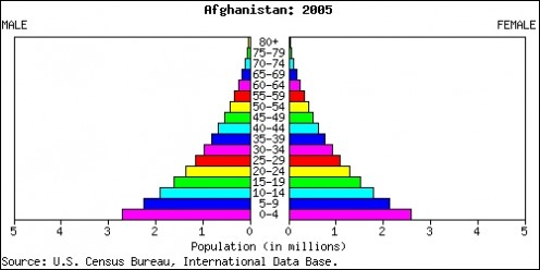 Afghanistan population pyramid in 2005, nearly identical as the United States' in the 1930s.  Notice the massive youth population that could support those who were 55 and up.