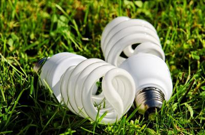 Choose energy efficient light bulbs
