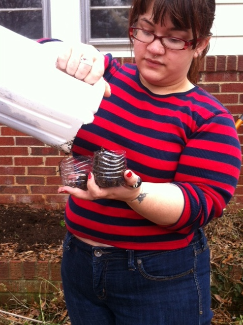 Here I am using the rest of the water bottles I cut up to serve as starter pots for some garlic I'm planting.
