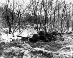 Nebraska Commando--a Story of World War II (based on truth)