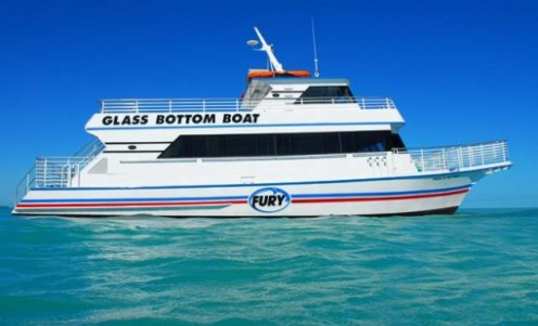 Glass bottom boat tours are a great way to learn about marine life and to see the wonders of the ocean with your own eyes.