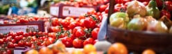 Get An Online Nutrition Degree From The Food Science Department