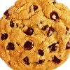 bakingblogger profile image