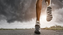 The Health Significance Of Physical Exercise And Fitness From A Medical Doctor's Perspective