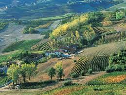 Piedmont Region  source of rare truffles