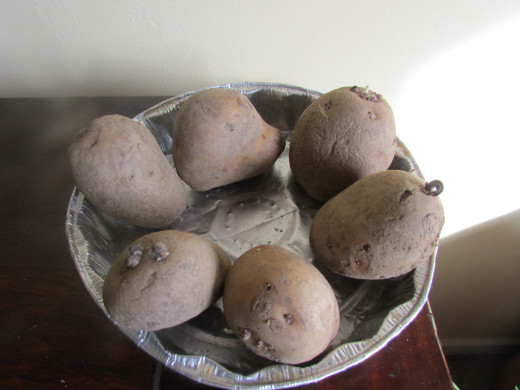 'Chit' your Seed Potatoes