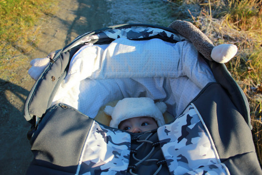 Fresh air and sunlight are important for a baby.