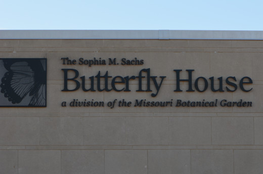 Getting closer to the entrance of the butterfly house, where you buy your tickets.