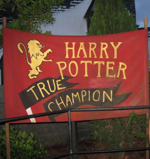 Survive the Dragon Challenge to become a Tri-Wizard Champion