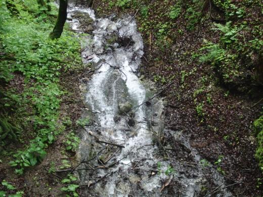 Waterfalls in the forest near the Neuschwanstein